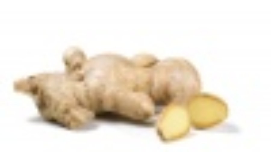 Ginger - charlotte weight loss programs