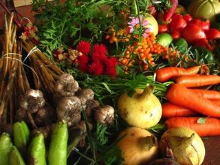 Vegetables - charlotte diabetes treatment