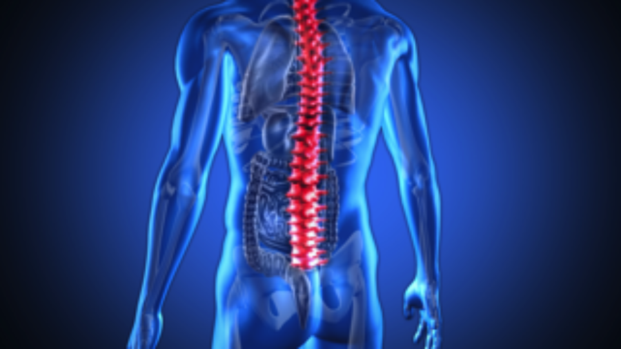 Man's Spine - hormone imbalance treatment in charlotte