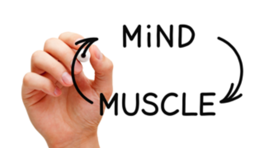 Mind to Muscle Chart - autoimmune disorder treatment in charlotte