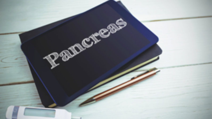 Pancreas - hormone imbalance treatment in charlotte